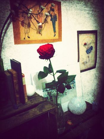 Flowers Enjoying Life Romance