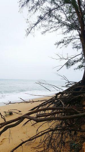 Thailand Sound Of Life Happy Fun Sea Sky Would Phuket Natural That's Me Hi! Beach Hello World Holiday POV