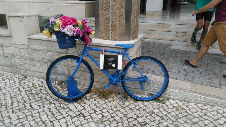 Bicycle Flower Outdoors Transportation Day Mode Of Transport Land Vehicle Stationary Real People Architecture City People Lisbon Lisboa Portugal Lisbonlovers Lisbon City Life Lisbon Streets Lisboalovers Lifestyles Lisbonview Lisbonne Lissabon Lisbonstreet Lisbonshop Lisbon Colors lisbon First Eyeem Photo
