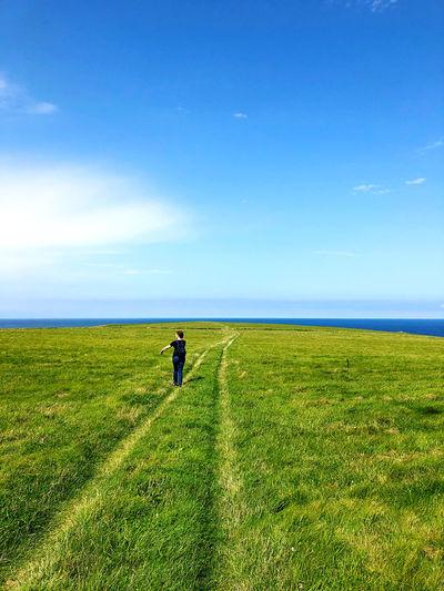Grass Land Sky
