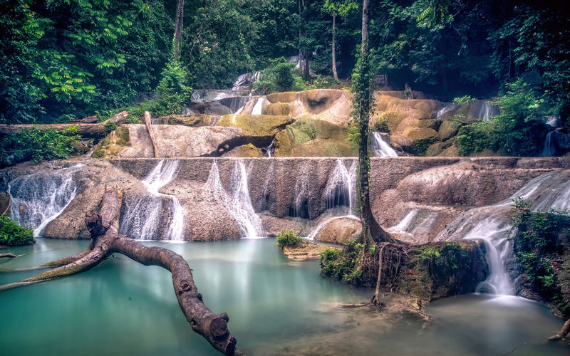 Moramo Waterfall Water Tree Plant Nature Scenics - Nature Beauty In Nature Waterfall Flowing Water No People Forest Motion Day Long Exposure Non-urban Scene Tranquility River Waterfront Land Tranquil Scene Outdoors Flowing Power In Nature Tranquility Rainforest Scenics