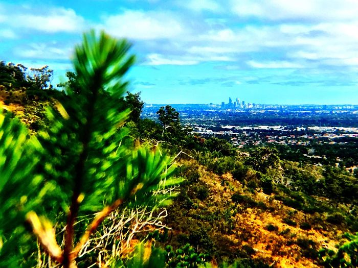 Scenics Cloud - Sky Tranquility Focus On Background Perthcity Views Bushwalking Western Australia Up In The Hills Tranquil Scene