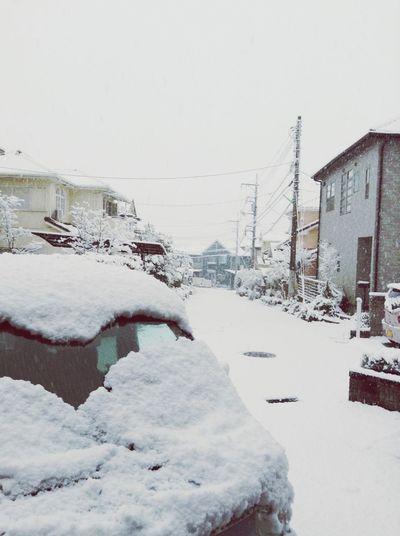 Snow Enjoying Life !