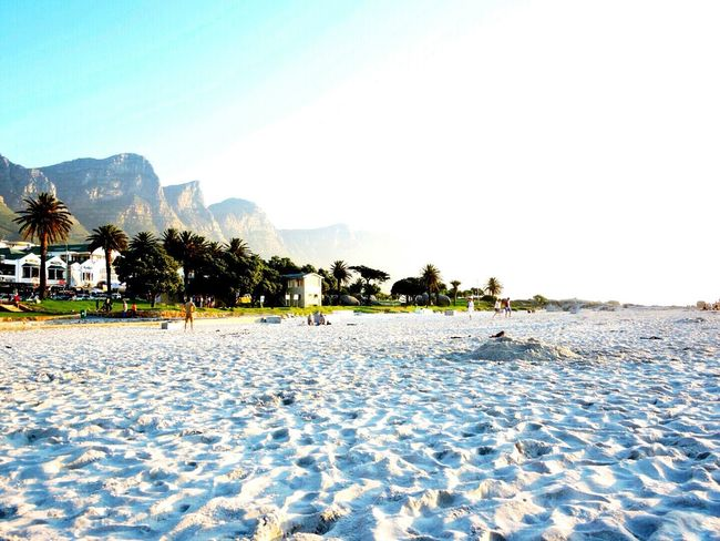 Beach Beachphotography Mountains 12apostles Capetown Campsbay Sand Urban Landscape Beautiful Trees South Africa The Great Outdoors - 2016 EyeEm Awards Outdoors