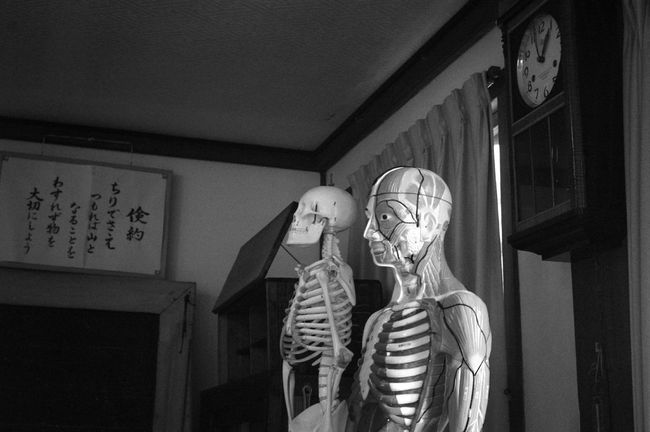 No People Indoors  Black And White Collection  Black&white Elementary School School Human Anatomy Anatomical Model Anatomical Clock Old Buildings