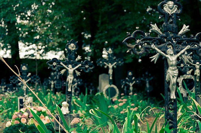 Alberner Hafen Friedhof Der Namenlosen Vienna Cemetery Crosses EyeEm Best Shots Fall Beauty