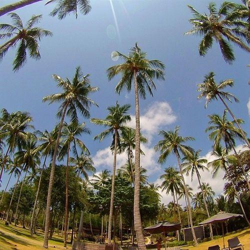 Haadtien Beach Resort Kohtao thailand tailandia gopro hero3