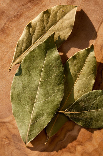 Dried bay leaves spice aromatic portion lying on wooden board macro, Laurus nobilis leaves heap in day light, vertical orientation, nobody. Bay Close-up Culinary Dried Dry Food Ingredient Laurel  Laurus Laurus Nobilis Leaf Leaves Macro No People Spice