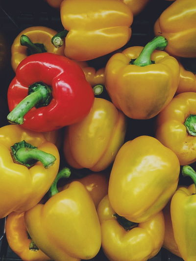Freshness Healthy Eating Yellow Food Bell Pepper Vertical Vegetable Red Showcase October 2016 The Week On Eyem Multi Colored Circle Foodporn Vegetarian Food Repetition The Photojournalist - 2017 EyeEm Awards