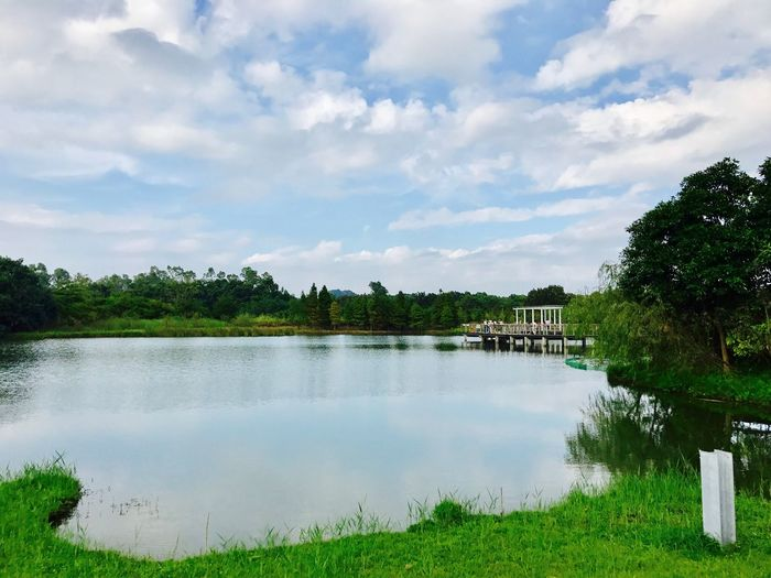 Tree Sky Water Nature Reflection Beauty In Nature Outdoors Tranquil Scene Scenics Lake Growth No People Cloud - Sky Grass Landscape
