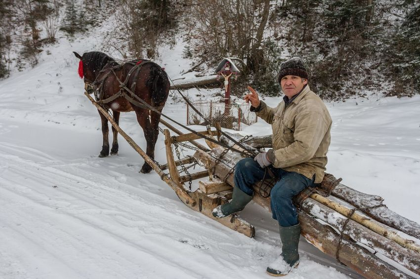 Bukovina Carpathian Nature Cross Jesus Christ Romania Sleigh Tranquility Winter Cold Temperature Full Length Horse Human Hand One Animal One Man Only One Person Religiuos Rural Scene Sleighride Snow Village Warm Clothing Winter