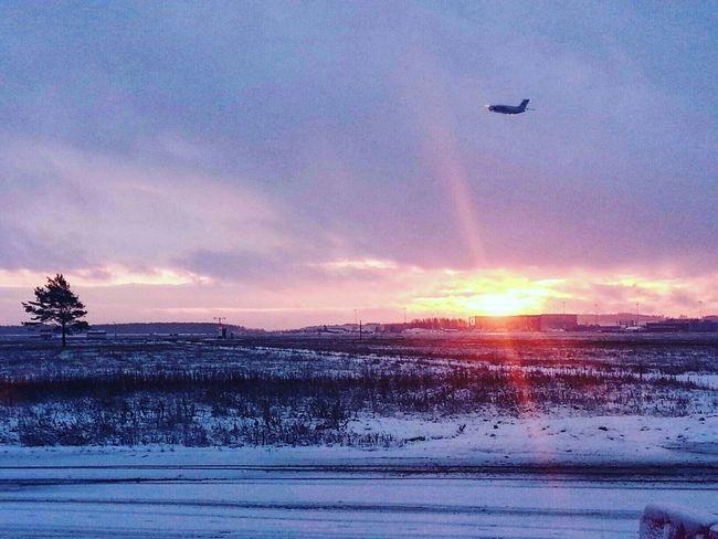 Saint-Petersburg Plane Pulkovo Sky Clouds Sunset Winter