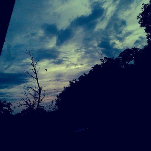 Cloud And Sky Taking Photos Homearea Photographer