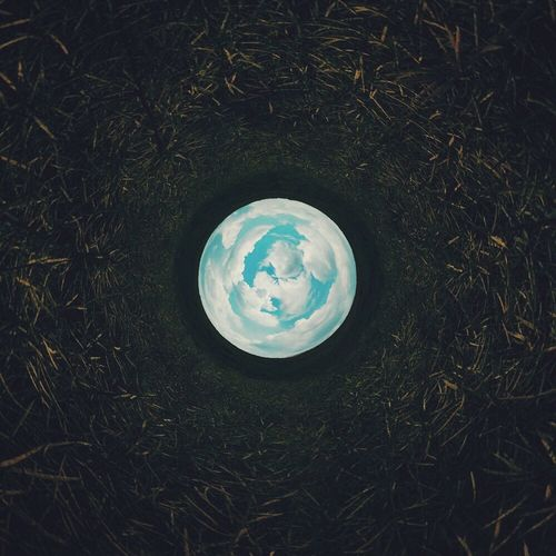 I can't believe I took this shot! ? Tiny Planet Rabbit Hole VSCO