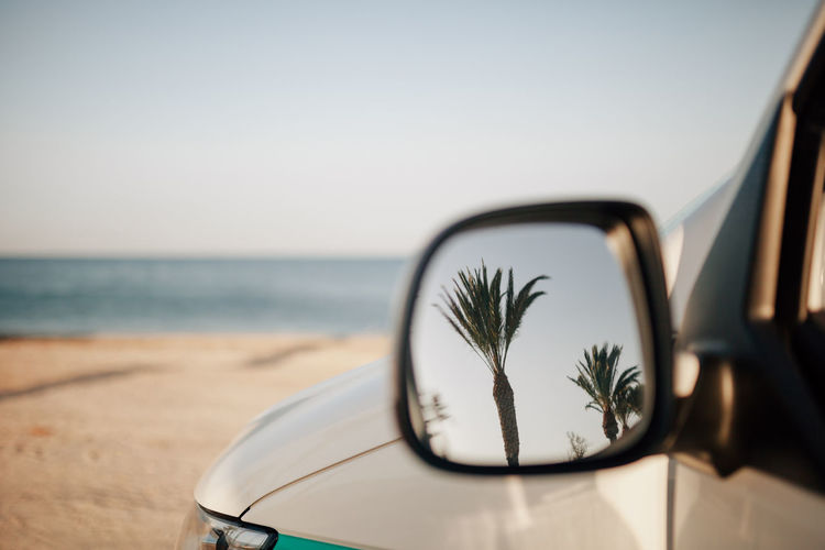 Reflection of palm trees on car mirror at beach