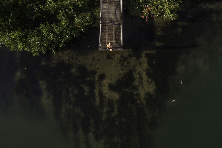 High Angle View Of Man Standing On Jetty Over Lake