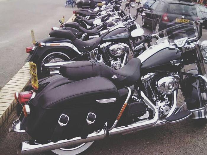 Row Of Harleys