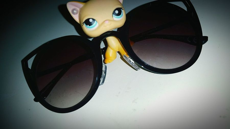 LPs Littlestpetshop Close-up No People Pets One Animal Cat Feline Toy Glasses Sun Glasses