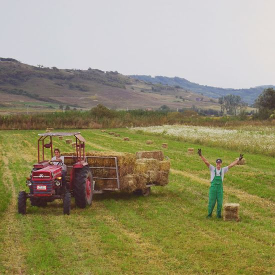 Casual Clothing Romania Romanian  Real People Field Landscape Arms Raised Nature Leisure Activity One Person Grass Fieldscape Outdoors Beauty In Nature Human Body Part Couple Working Hard Tractor Driving Waving Waving Hello Happy People Happy Happiness Field