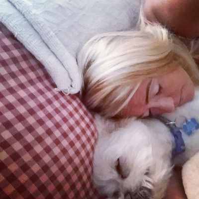 Nap time, lazy summer day Londonharvey Summer Mom &sontime Pomerainan