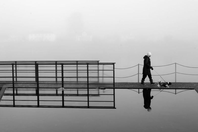 Person walking with dog on pier amidst lake against sky