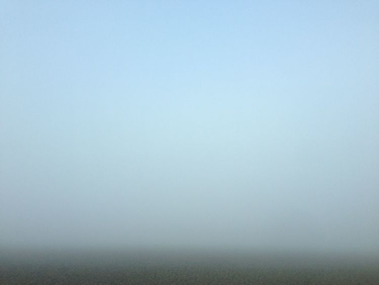 Showcase: January It's Cold Outside Winter Foggy Minimalism On The Road Abstract Deceptively Simple