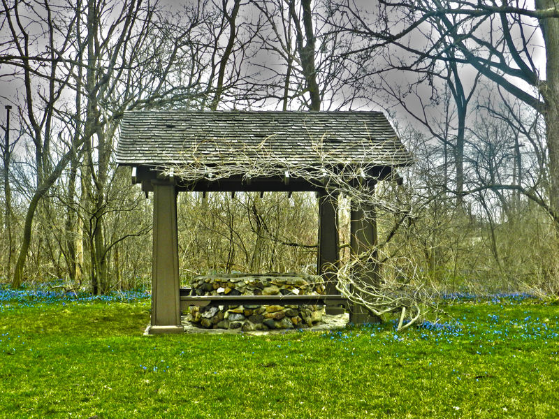 Henry Ford Estate Wishing Well Absence Bare Tree Beauty In Nature Branch Branches Day Empty Field Grass Grassy Green Color Growth Henry Ford Estate Landscape Nature No People Outdoors Park - Man Made Space Scenics Stone Tranquil Scene Tranquility Tree Well  Wishing Well