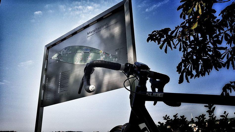 Bicycle Margaret Island Sports Photography Budapest, Hungary