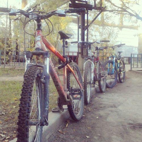 Starkbikes Stark Cube Cubebikes veloykt gtbikes avalanche funriser aim veloykt velo_ykt койоты