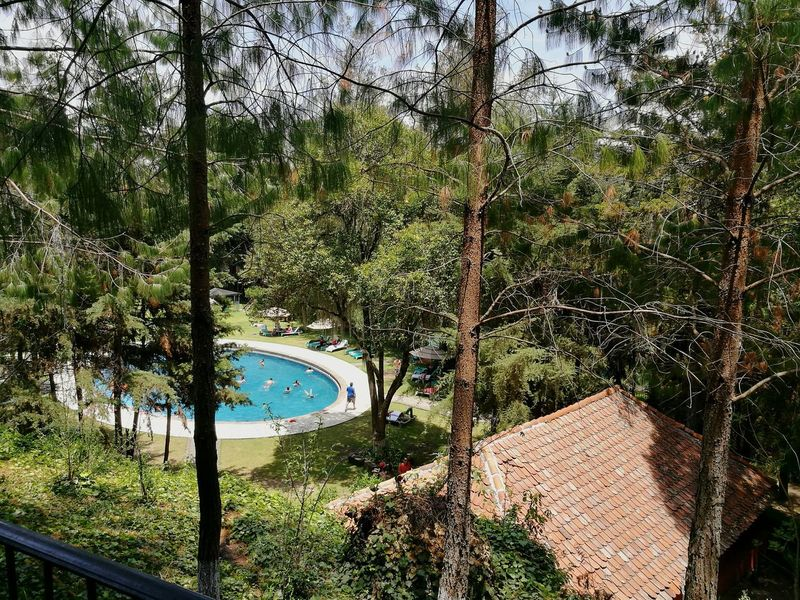 Pool Alberca Tourism Low Angle View Travel Destinations Tree Green Color Full Frame Architecture