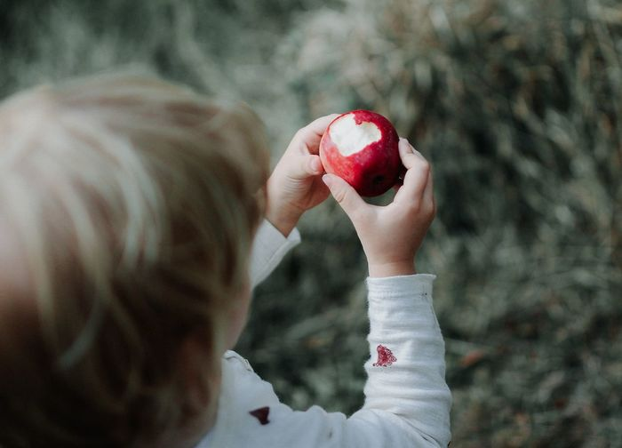 Close-up of boy holding apple