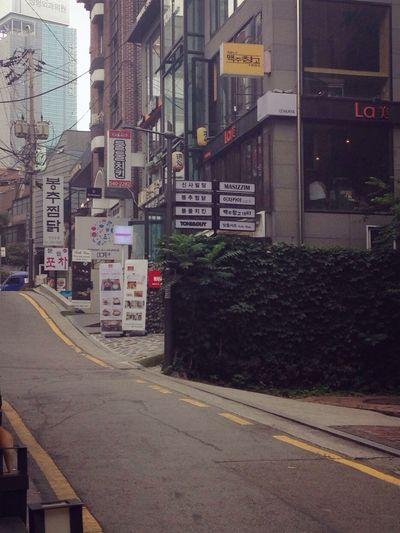 首尔 韩国 林荫路