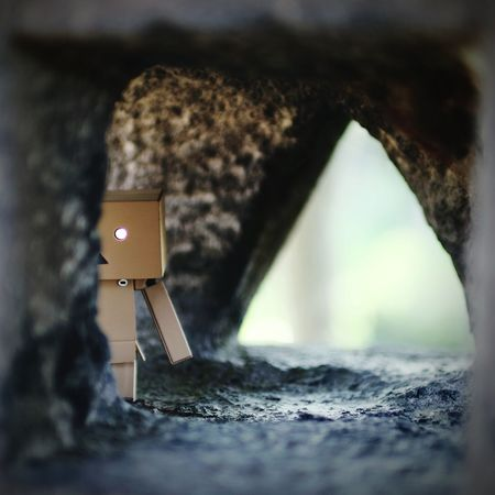 家政婦は見た。 Danbo Taking Photos Cheese! Enjoying Life Depth Of Field Shrine Stone Lanterns