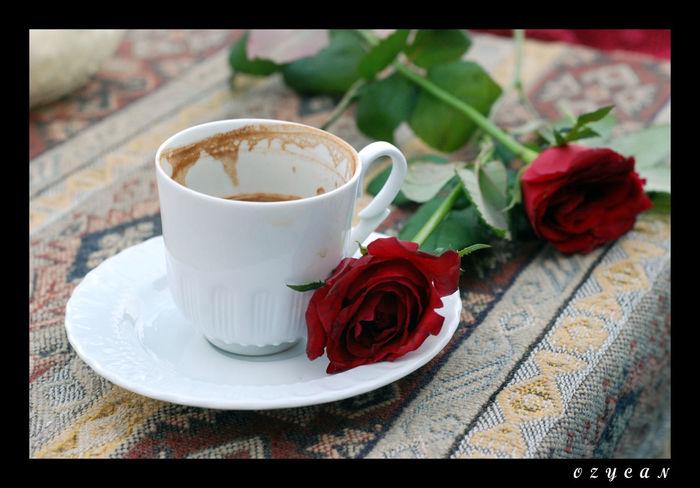 kirk yillik hatırı vardır :) Coffee Turkkahvesicandir Ros 🌹 Istanbul #turkiye