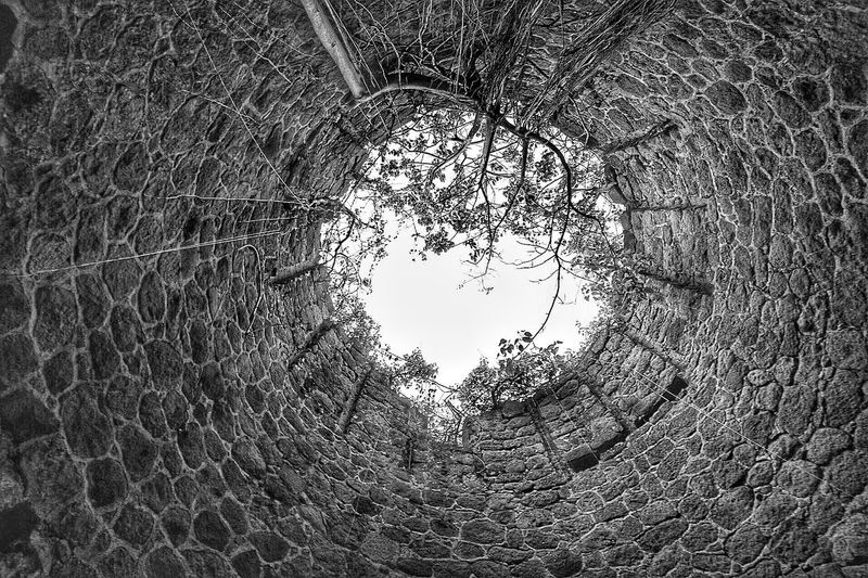 Sometimes you just have to stop and look to the sky... Abandoned sugar mill looking straight up Abandoned Sugarmill Sugar Mill Stone Nevis St. Kitts And Nevis Stones Stone Wall Sky Vine Vines Vines On Wall Tree Textures And Surfaces Blackandwhite Black & White Monochrome Cool