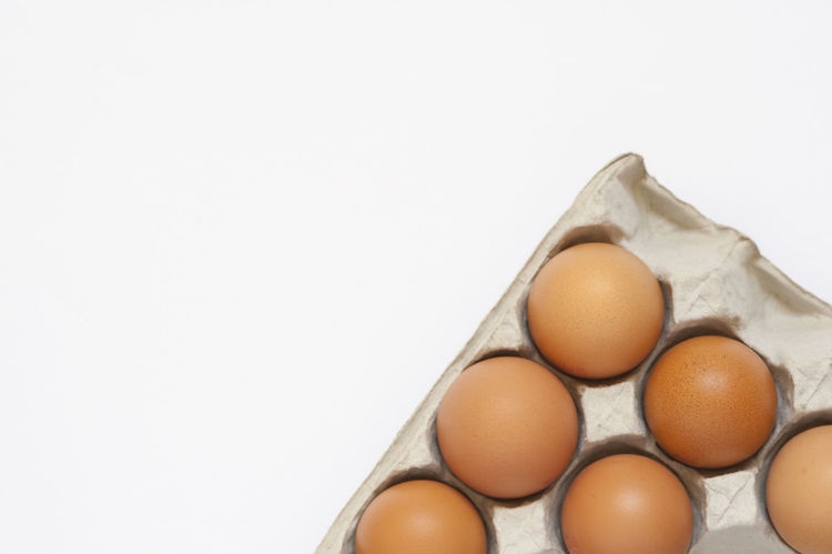 Close-up studio shot of half a dozen brown chicken eggs in a tray. Background Breakfast Brown Chicken Close-up Egg Eggs Food Food And Drink Fragile Fresh Freshness Healthy Hen Ingredients Life Nature Nobody Nutritious Organic Six Studio Shot Tray White White Background