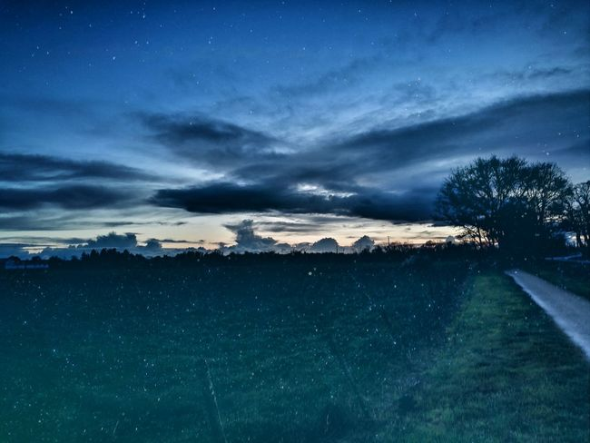 Dobble Exposure Stars France🇫🇷 HuaweiP9 Leica Lens Huawai P9 Vendée Huawei P9 Space Landscape Space And Astronomy Night Cloudscape Star - Space Dramatic Sky Sky Cloud - Sky Nature Beauty In Nature Tree Milky Way Astronomy Outdoors No People EyeEmNewHere