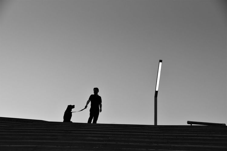 Low angle view silhouette man with dog standing against sky