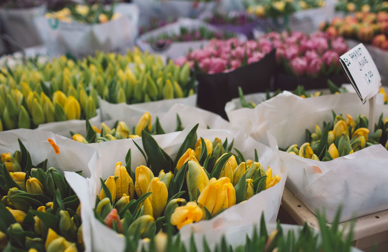 Various flowers at market stall for sale
