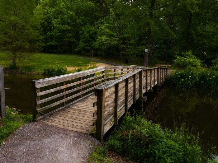 Footbridge over footpath amidst trees in forest