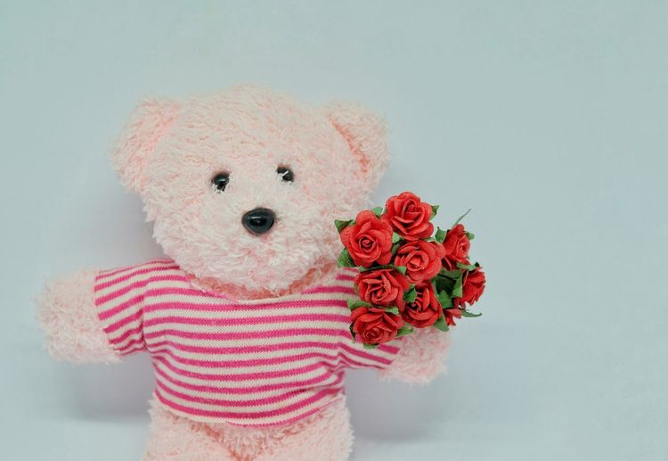Close-up of teddy bear with artificial roses against gray background