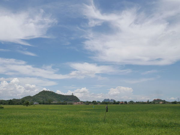 View.. Backgrounds Geeen Mountain Blue Cloud Irrigation Equipment Tree Rural Scene Agriculture Field Cereal Plant Working Farm Sky Grass