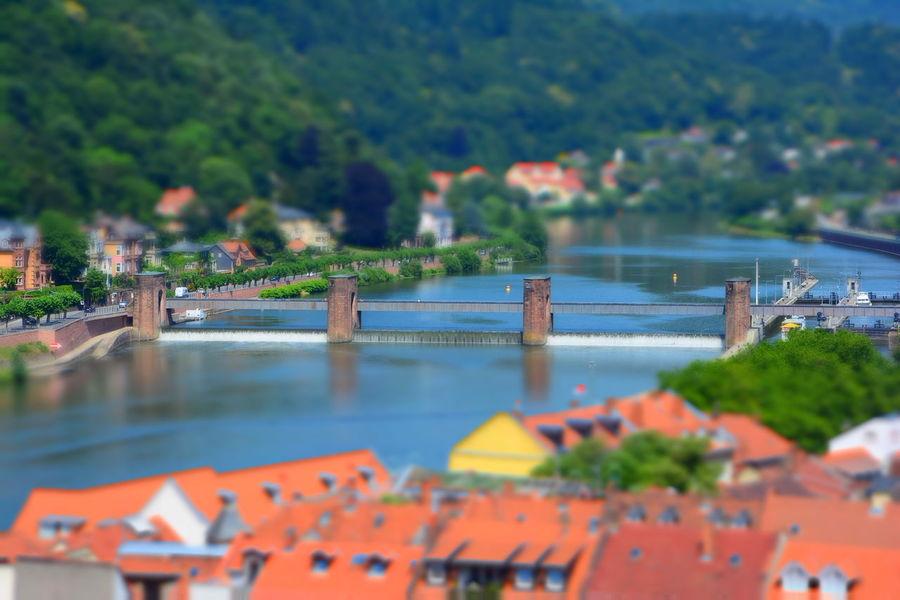 Karl-theodor-brücke Alte Brücke Heidelberg Architecture Bridge - Man Made Structure Built Structure Neckar River Tilt-shift Water