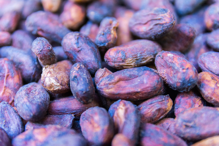 Cacao from Guadeloupe, Basse-Terre, Guadeloupe Cacao Beans Agriculture Background Cocoa Caribbean Tropical Food Close-up Macro Torréfaction Chocolate Freshness France Healthy Natural Fruit Industry Ingredient Organic Production Sweet Raw Food Vitamin West Indies