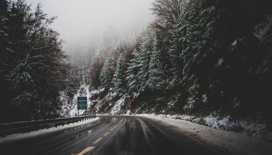 Street in the Black Forest Tree Road The Way Forward No People Cold Temperature Car Snowing Outdoors Snow Winter Direction Fog Nature Transportation Dividing Line Land Vehicle Day