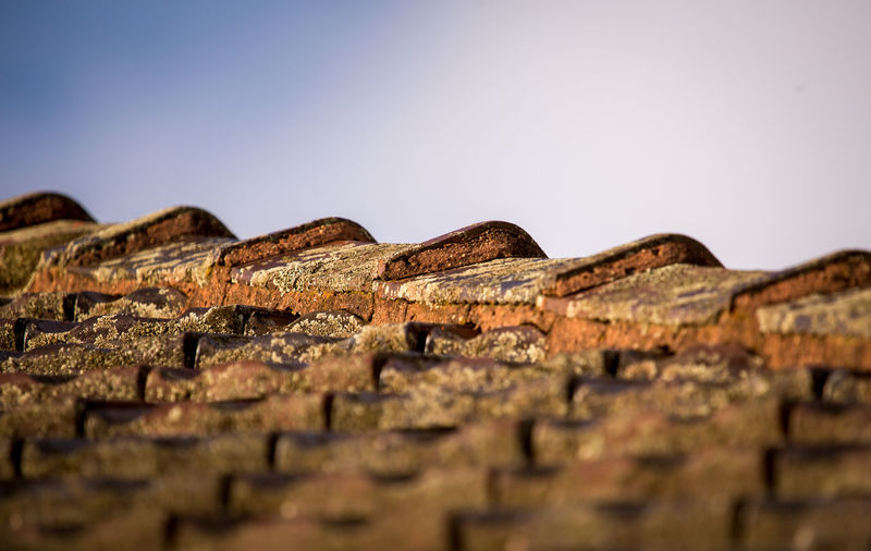 My neighbor's roof :) Building Composition Construction Detail From My Point Of View From The Rooftop Longlens Roof Roof Tile Urban Exploration Showcase March How Do We Build The World? Macro Photography Details The Architect - 2016 EyeEm Awards