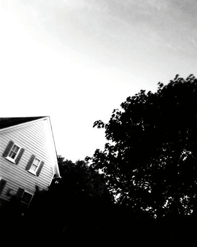 Blackandwhite Creepy Tree Outdoors Photography Taking Photos Oddbeauty Old Antique Vintage Old House Contrast Fine Art Photography Adventure Club EyeEm Gallery Interesting Branches And LeavesBright_and_bold Bright Colors Streetphotography Eerie Scene Checkthisout!