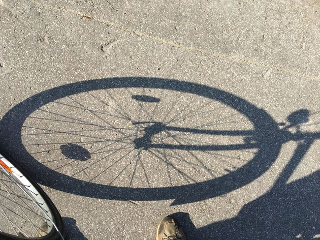 Fahrrad, Reifen, Rad, Schatten, Symbolbild, Shadows & Lights Sunlight Shadow High Angle View Circle Geometric Shape Shape Road Bicycle Street Pattern Day City Art And Craft Outdoors Transportation