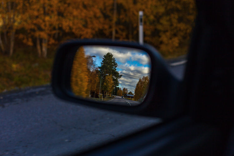 mirror Tree Point Of View Land Vehicle Vehicle Mirror Car Car Interior Eyesight Window Close-up Sky Side-view Mirror Rear-view Mirror Road Trip Driving Windscreen