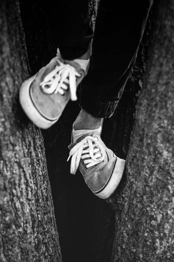 Shoe Body Part Casual Clothing Child Day Human Body Part Human Foot Human Leg Human Limb Jeans Leisure Activity Lifestyles Low Section Men Nature One Person Outdoors Real People Shoe Tree Tree Trunk Trunk Van